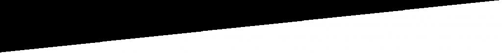 whitetrianglebottomsmall-1024x110_2